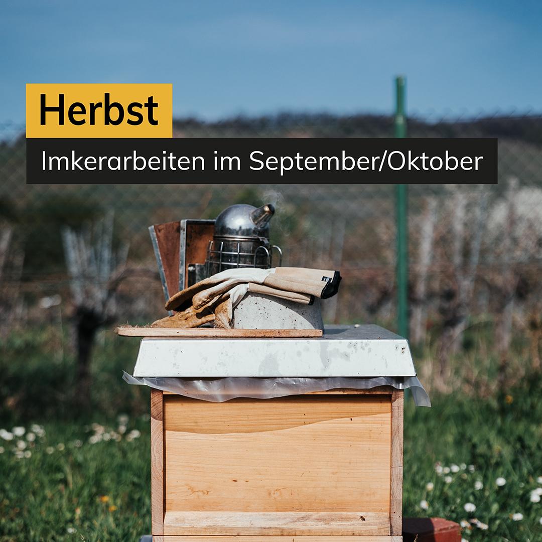 Herbst Imkerarbeiten im September/Oktober