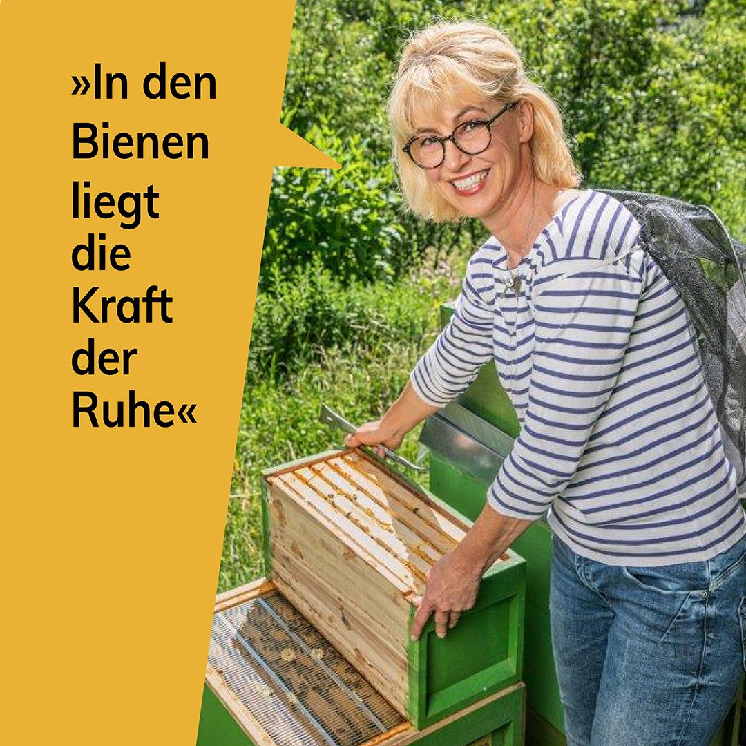 In den Bienen liegt die Kraft der Ruhe