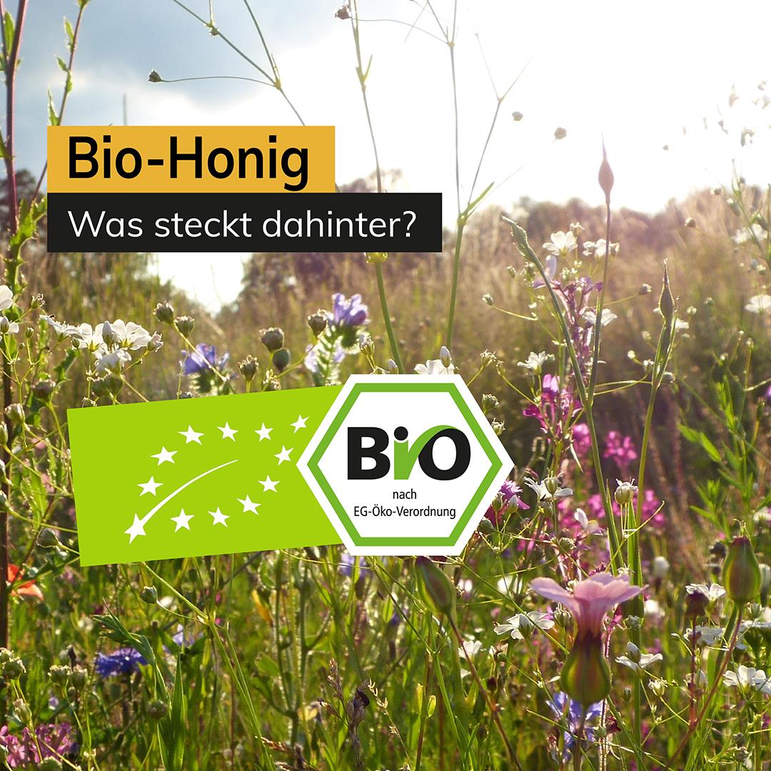Bio-Honig Was steckt dahinter?