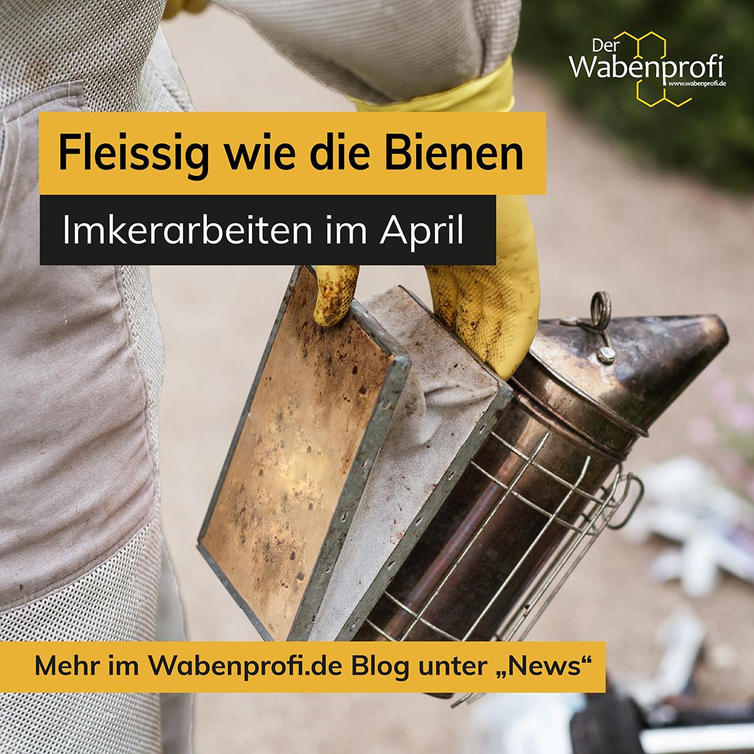 Imkerarbeiten im April - Was ist zu tun